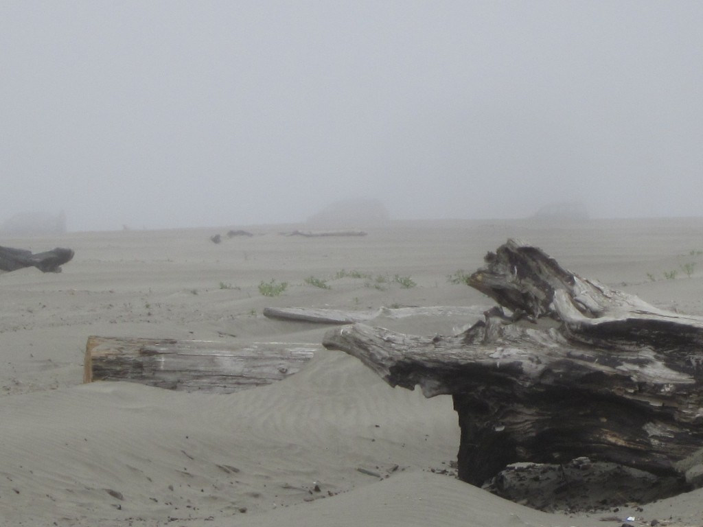 Ocean Shores WA and believe me, about 5 miles east of this is bright sunshine....
